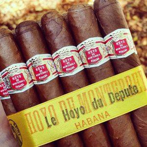 Hoyo De Monterrey Cuban Cigars